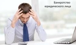 Банкротство ООО с долгами – возможная ответственность руководства и учредителей