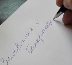Образец заявления о признании должника банкротом.